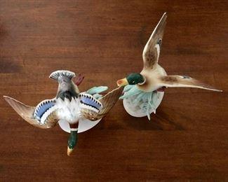 Duck statues