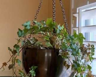 Hanging house Plant #1	NO Wall Mount