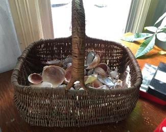 seashells and baskets