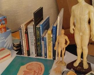After Anesthesiology the doctor turned to Chinese  acupuncture  with a focus on the ear. Books and models  shown
