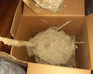 Hornet's nest #2