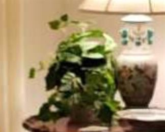 0036 Main Building Living Room Plant silk ivy with pot profile