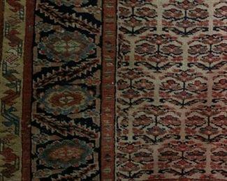 Persian North West Persian, Runner