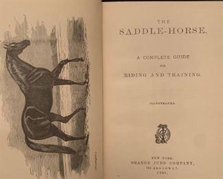 The Saddle Horse, 1885
