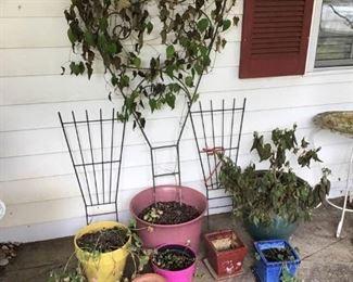 Outdoor Deco Pots and Trellis