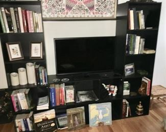 Bookcase surrounding TV