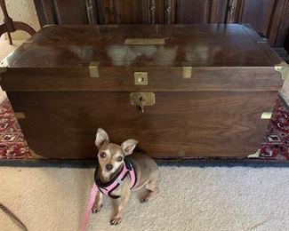 Lane 75th Anniversary Ltd. Ed. cedar chest (Chihuahua not included) 😊