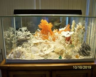 "Unique Dry Aquarium - 40""x20""x20"" Light and cabinet go with this Treasure."