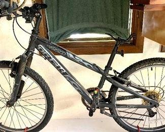 Trek 220 bike
