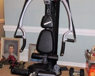 Inspire M2 Home Gym ($2,400+ retail).  Free standing gym - available for immediate purchase.  Free weights, ankle weights, weight belts and other exercise items