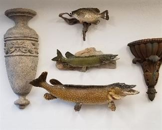 Architectural wall decor and taxidermy fish.