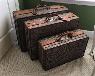 Vintage luggage cases