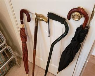 canes and umbrellas