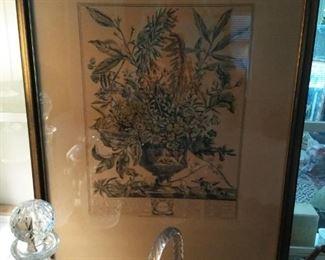 Pair of Colonial Williamsburg botanical prints