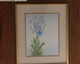 'Norma's Iris' 2004 By Local Artist John W. Boozer