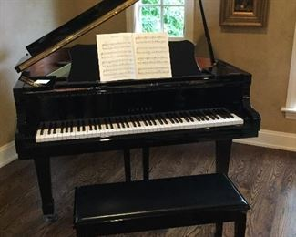 Yamaha # 510 black lacquer Grand Piano in absolute wonderful condition....w/bench