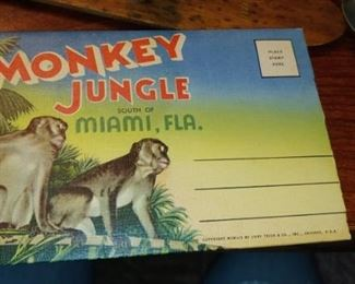 Monkey Jungle Miami fold out postcard