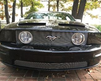 Front view of Mustang