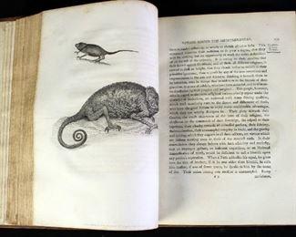 Lord Sandwich's Voyage Written By Himself, 1799