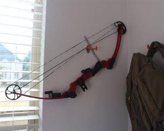 Genesis compound bow