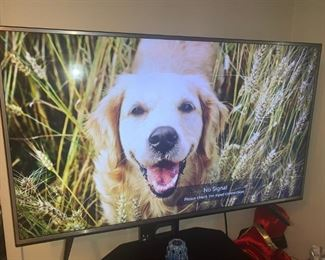 "Newer LG 55"" TV"
