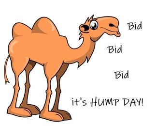 A2B Camel its HUMP DAY