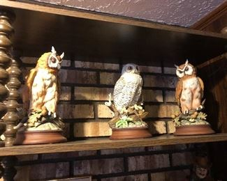 Great Owls