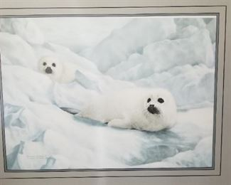 "Signed and Framed ""Peace on Ice-Harp Seals"" by Charles Frace 373/5721"