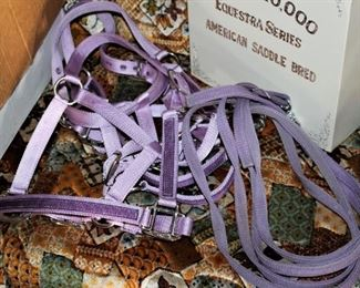 Halters, Lead ropes and Headstalls