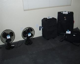 Fans, Luggage