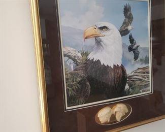 Mario Fernandez framed eagle print