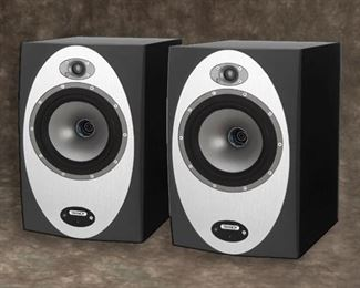 TANNOY PERCISION 8D