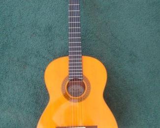 Fender Guitar  CG-11E Nat.