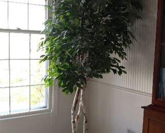 Fake indoor tree - $45