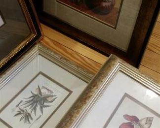 botanicals and vegetables, framed