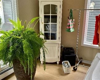 Fabulous fern plant.  Beautiful storage hutch in the background.