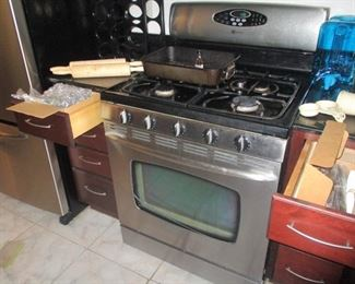 CONVECTION OVEN by MAYTAG-- COST OVER $2500 NEW. WE WILL SELL IT FOR $500.