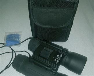 Compact Binoculars w/ case