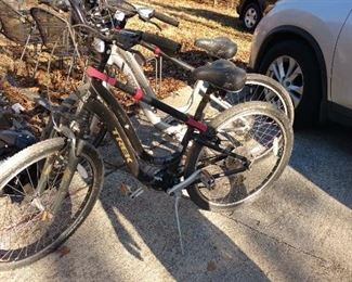 "Trek Navigator  bicycles. 13"" and 16.5"" (Navigator 3.0)"