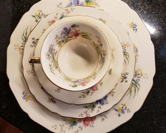 Thomas Ivory Bavarian china