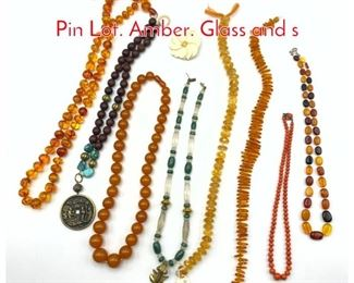 Lot 219 9pc Beaded Necklace, Carved Pin Lot. Amber. Glass and s
