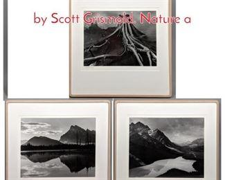 Lot 350 90 3 pc Large Format Photos by Scott Grismold. Nature a