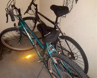 His and hers bikes