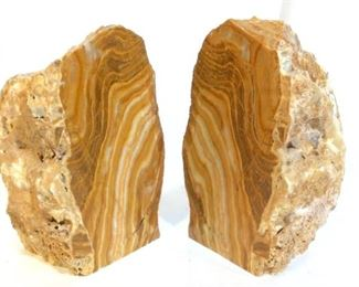 Petrified Wood Stone Bookends
