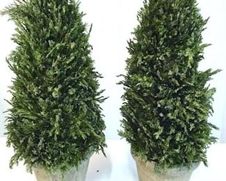 Pair Decorative Pine Topiaries