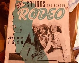 Cool Rodeo brochure