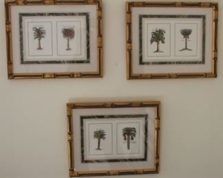 Beautifully framed and matted palm tree prints.