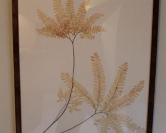 Pressed fern original art, beautifully presented.