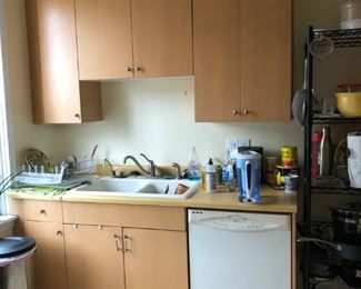 Kitchen Cabinets, Sink & Contents