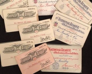 American & National League annual passes to all ballparks